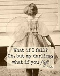 What if you fail? But what if you fly?