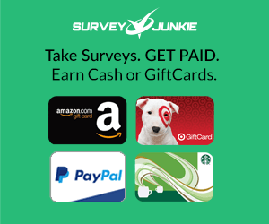 How Does Survey Junkie Work?